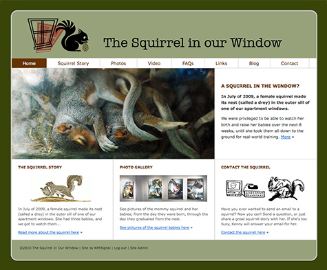 squirrel-site-475